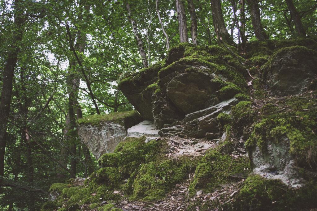 Ein Felsvorsprung irgendwo im Wald: umgeben von Bäumen ragt er empor und ist nur lose von Mosen bedeckt.